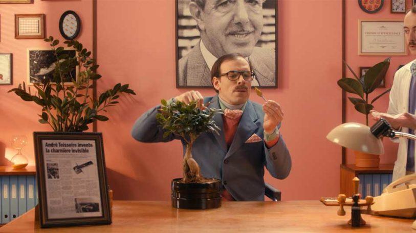 homme costume pointilleux précis assistant blouse laboratoire ficus feuille